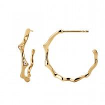 Catch Creole Earrings 14K Gold