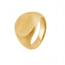 Signum Ring 14K Guld