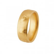 Signum Ring 18K Guld