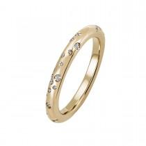 Stardust Ring 14K Guld
